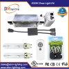 630W Double Output Digital Ballast Grow Light Kits with Digital Splitter