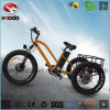 Aluminum Alloy Trike Fat Tire Electric Tricycle with Passenger Seat