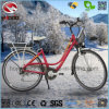250W Electric City Road Ebike Good Quality Bicycle for Adult