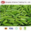 Frozen Okra with Top Quality