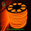 Orange LED Flex Neon for Outline Lighting, Building Decoration