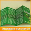 Custom Made Brochure Printing Services (BLF-F066)