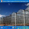 PC Sheet Greenhouse Polycarebonate Greenhouse for Agricutdural Growing