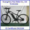 E Bike with Bike Aluminium
