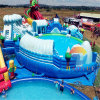 Snow World Theme Inflatable Water Park Playground with Swimming Pool