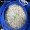 New Crop Pickled Garlic (250-350PCS/kg)