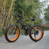500W Fat Tire Ecycle Mountain E Bike Ebike
