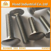 Stainless Steel Square Neck Carriage Bolt