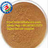 Brown Fine Powder Natural Epimedium Extract for Sex Disorder