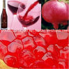 Top Wine,EU Grape Pomegranate Wine/Brut,100%Juice Brewing,Rich Anthocyanin, Amino Acids,Anticancer,Antiaging,Blood Tonic,Prevention of Ischemic,Aphrodisiac Wine