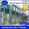 Algeria Market 50 Ton Per Day Wheat Flour Mill