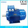 Ye3 1.1kw Three-Phase Cast Iron Induction Electric Motor