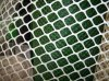 Agricultural Extruded Plastic Plain Nets Plastic Flat Wire Mesh