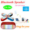Portable Mini Wireless Bluetooth Speaker (CH-302)