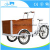 Closed Cabin Cargo Tricycle 3 Wheel Electric Bike Vehicle