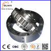 Gearbox Bearing Rsci300II-M Overrunning Clutch Bearing with High Torque