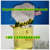 Anabolic Injectable Steroid Powder Semi-Finished Durabolin Deca for Bulking Cycle