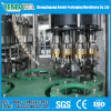 Automatic Juice Bottling Plant / Machine / Equipment for 0.25-2L Pet Bottle