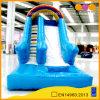 Rainbow Inflatable Water Slide (AQ1012)