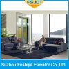 Low Noise Panoranic Elevator Lift with Full View Sightseeing Glass From Fushijia Brand