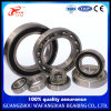 Chrome Steel Deep Groove Ball Bearing 6309-2rzn/450309