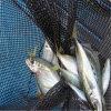 Aquaculture Net, Knotless Fishing Mesh Net