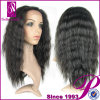 Hot Sale 100% Japanese Kanekalon Synthetic Hair Wig (GP-YL9118)