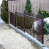 Black Iron Palisade Fence for Garden