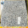 Grey Granite G603 Granite Tiles and Steps