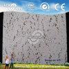 PVC Vinyl Laminated Gypsum Ceiling Tile (NGCT-1121)