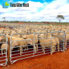 60 X 30 Oval Rails Heavy Duty Sheep Panels
