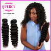 Quercy Hair New Arrival Cheap Virgin Indian Deep Wave Hair Bundles Original Indian Human Hair