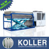 Koller 5000kg Per Day Top Quality Directly Evaporated Ice Block Machine