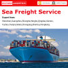 Sea Freight From China to Worldwide