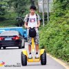 Hot Sell 72V Lithium Battery China Electric Chariot