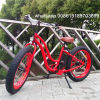 Fat Tire Electric Bicycle with 48V500W Bafang Motor for Lady