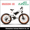 500W Eco-Friendly E-Bike with Over-Sized Tyres