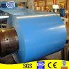 Color Coated Steel Sheet/coils