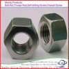 Galvanized Carbon Steel Hex Head Nut /Hex Nut DIN 934 M8, M10, M12