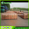 Best Price Film Faced Plywood in Linqing Chengxin Wood Industrt Co., Ltd