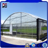 Vegetable Used Plastic-Film Large Span Steel Frame Greenhouse