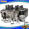 Global Warranty Cummins Diesel Engine Part