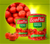 High Quality Canned Tomato Paste 70g (easy hard open) 18/20% 22/24% 28/30%