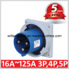 IP67 63A 2p+E Cee Single Phase Panel Mounting Inlet