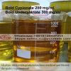 Muscle Gain Steroids Boldenone Acetate for Bodybuilding CAS 2363-59-9