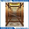 Villa Passenger Elevator with Handrail