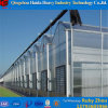 Glass Automatic Commercial Greenhouse for Sale