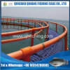 Circular Floating Fish Farming Cage with HDPE Brackets