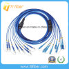 FC-Sc Armored Fiber Optic Patch Cord G652D 8 Cores
