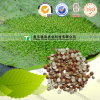 100% Pure Natural Herb Medicine Gordon Euryale